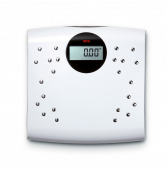ESE804 Seca Digital personal scales with 24 chrome-plated electrodes and BMI function